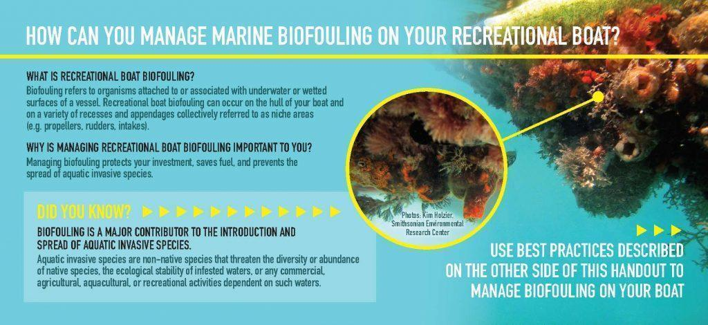 BiofoulingBestPractices_Handout_FINAL_Page_1